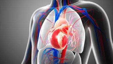 Photo of الحمى الروماتيزمية…أعراضها و 5 مضاعفات تسببها في القلب والعلاج المناسب